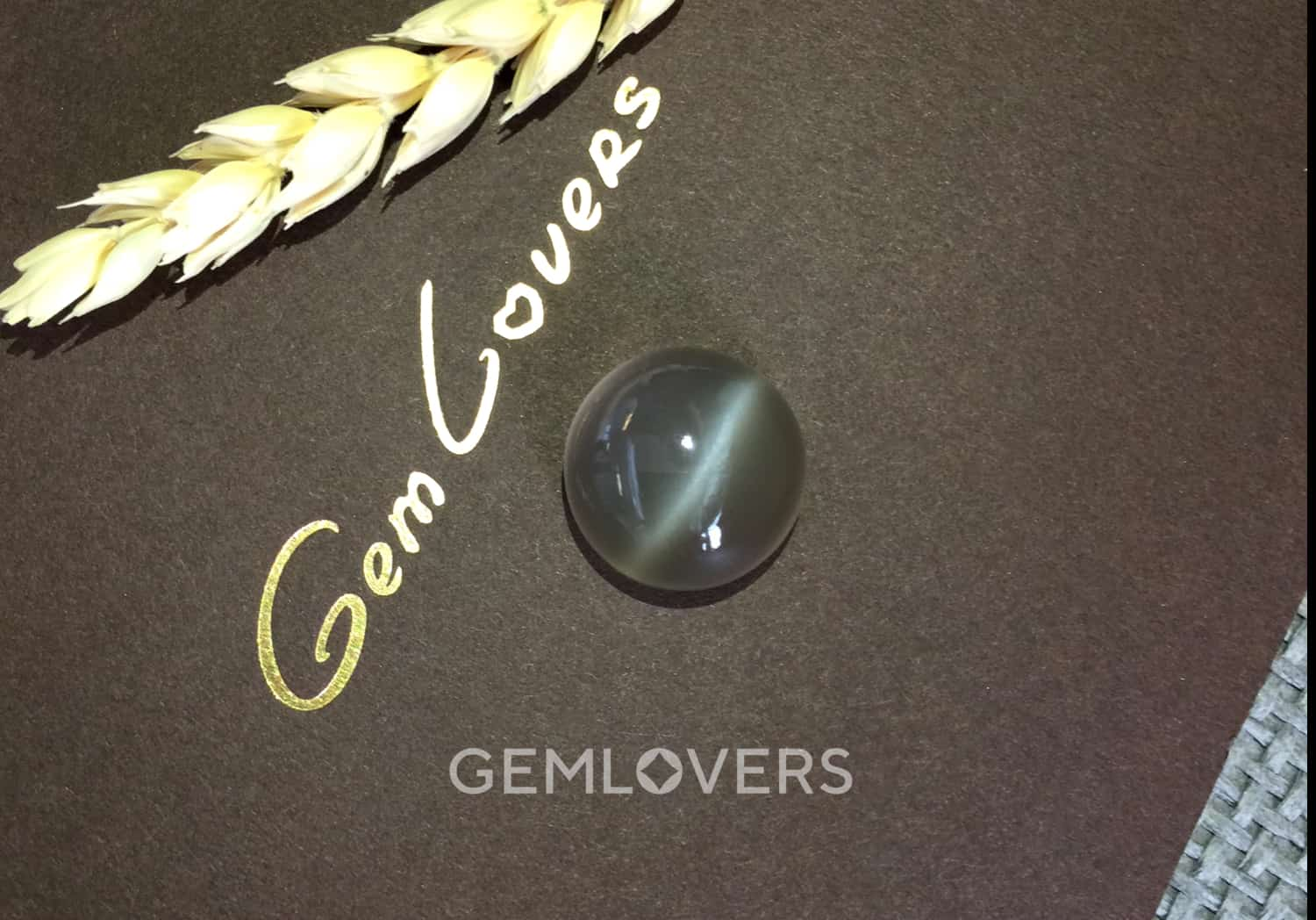 Gray moonstone with a cat's eye gemlovers